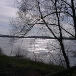 k-Rüterberg Elbe bei Hochwasser